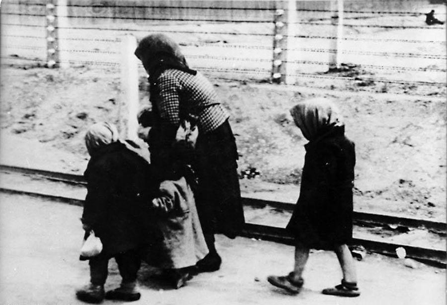 hungarian jews and the holocaust essay