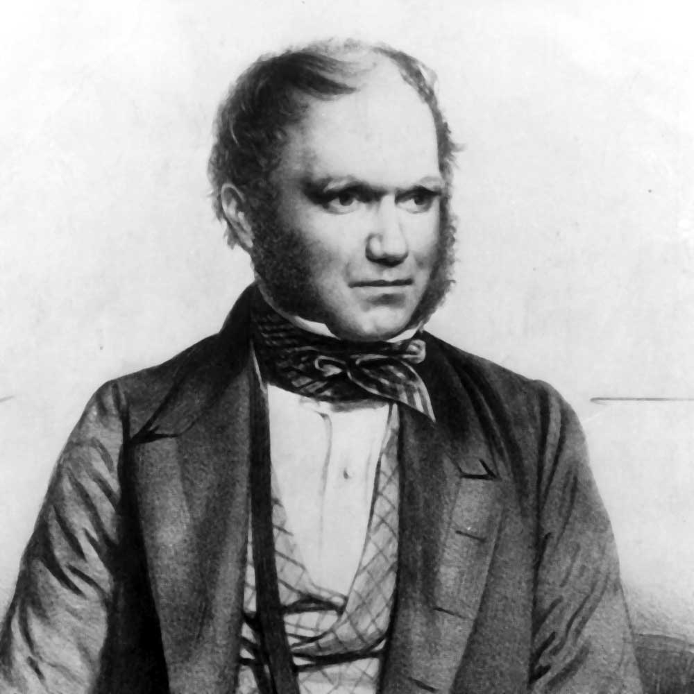 carles darwin A summary of childhood in 's charles darwin learn exactly what happened in this chapter, scene, or section of charles darwin and what it means perfect for acing essays, tests, and quizzes.