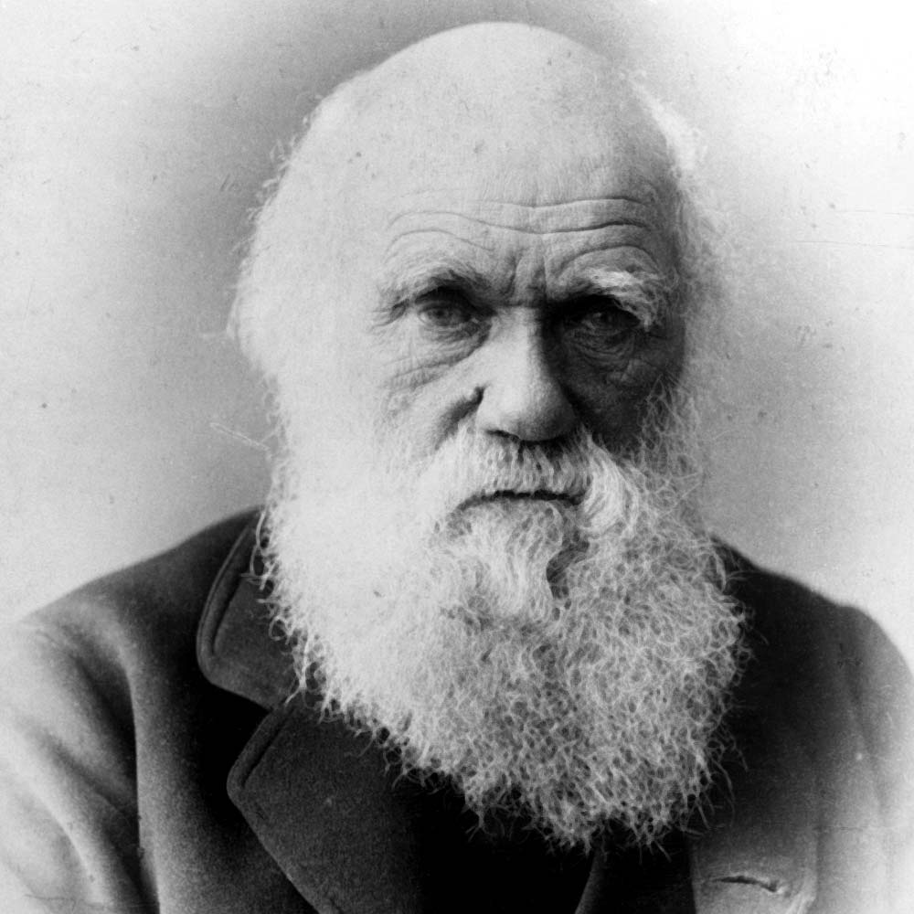 a biography and life work of charles darwin Charles darwin biography charles darwin (1809 – 1882) was an english natural scientist who laid down a framework for the theory of evolution – showing how man evolved from lower life forms.